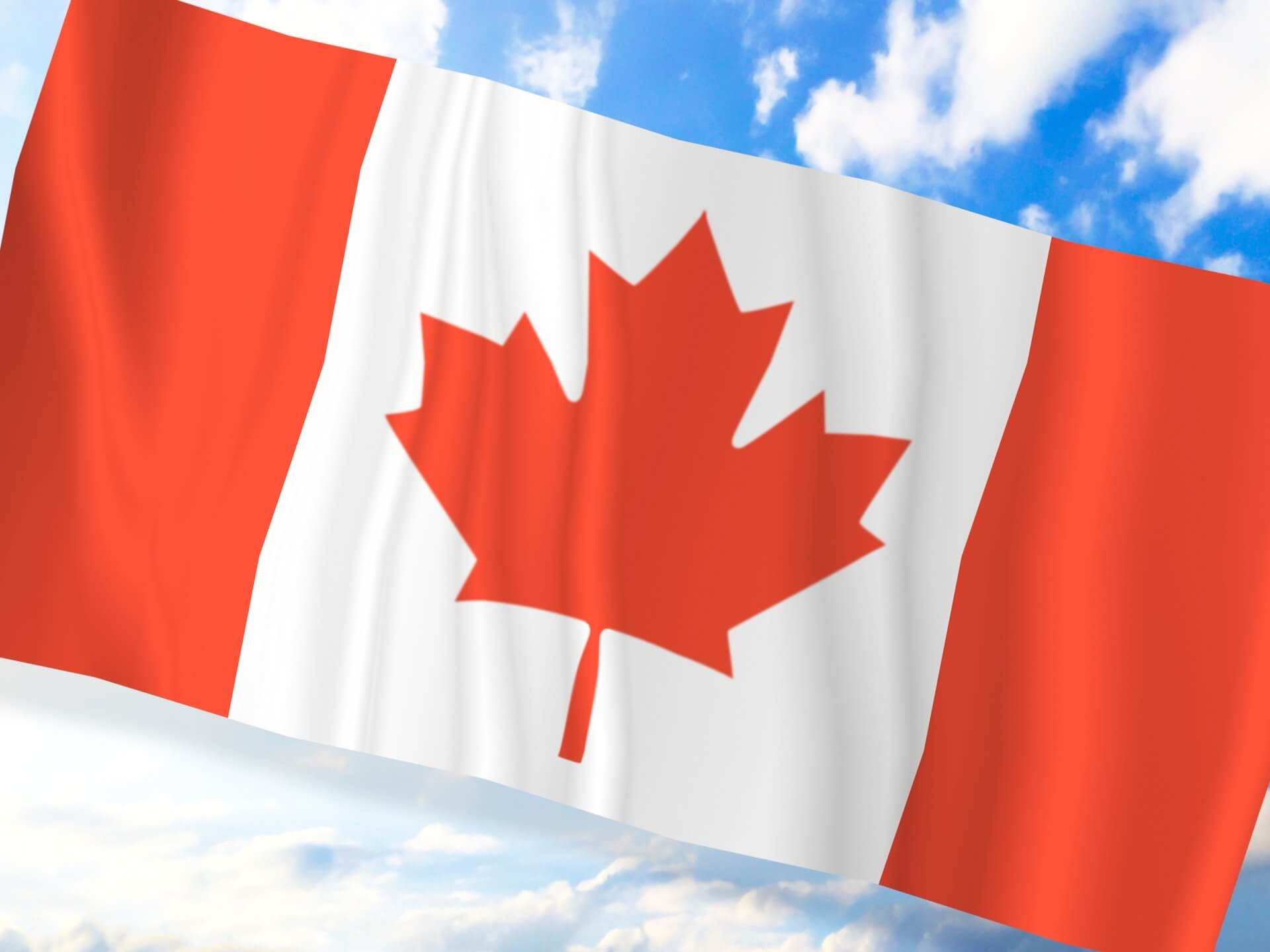 【コラム】一人暮らしの体験談 カナダへ留学後